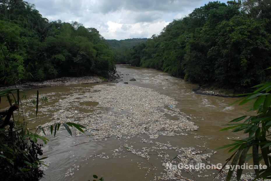 Styrofoam di Sungai Cicatih