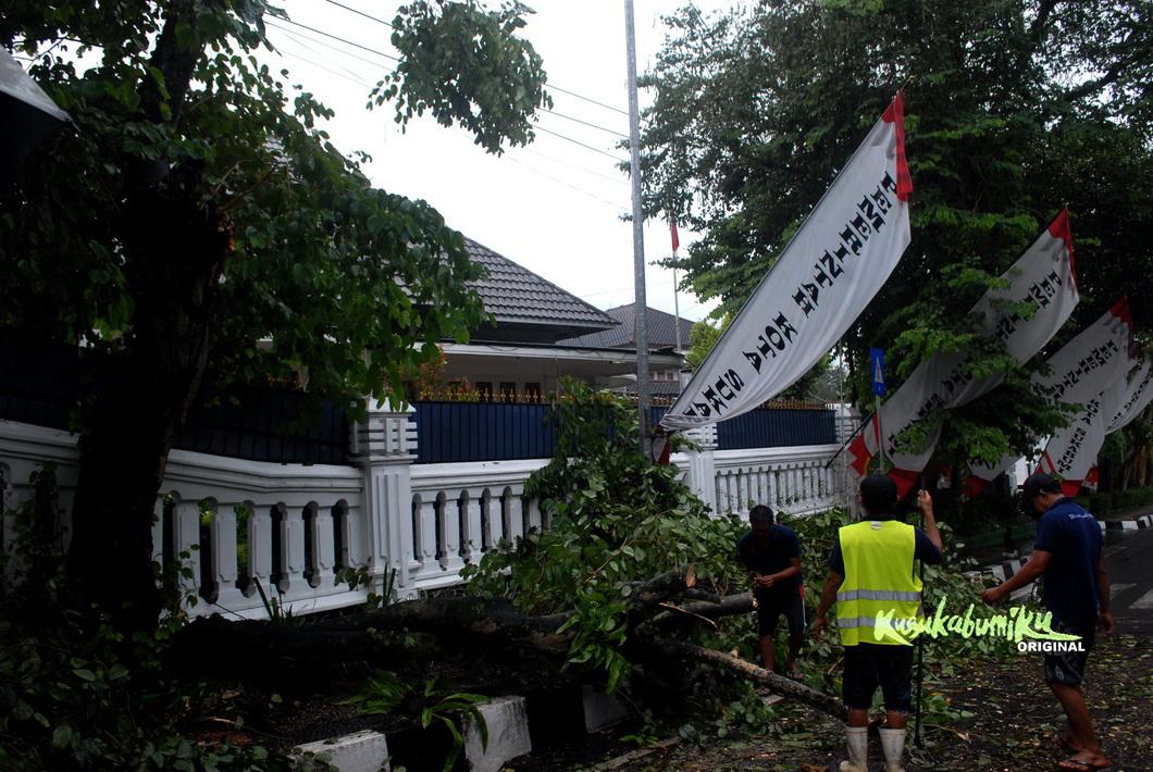 Satu Pohon Tumbang di Depan Rumdin Wali Kota Sukabumi