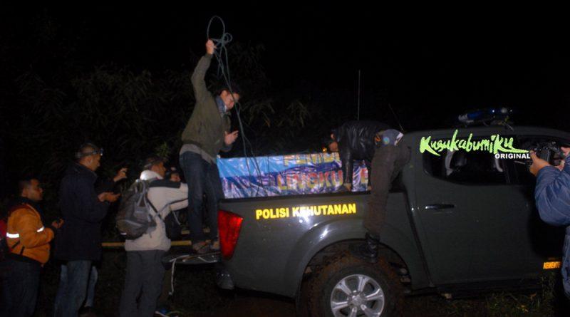 Macan Tutul Dilepasliarkan di Sukabumi